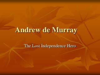 Andrew de Murray