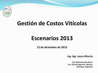Gestión de Costos Vitícolas  Escenarios 2013 12 de diciembre de 2013