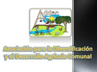 Asociación para la Diversificación  y el Desarrollo Agrícola Comunal