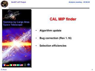 CAL MIP finder