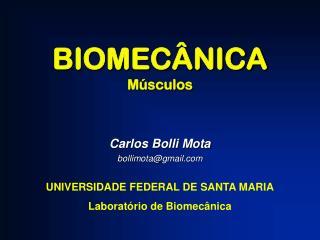 BIOMECÂNICA Músculos