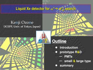 Liquid Xe detector for  m + g e + g  search