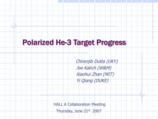 Polarized He-3 Target Progress