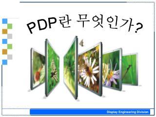 PDP 란 무엇인가 ?