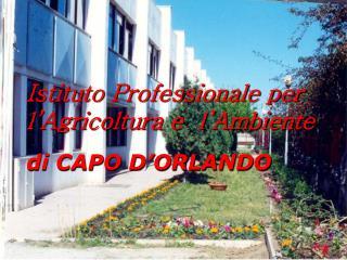Istituto Professionale per  l'Agricoltura e  l'Ambiente di CAPO D'ORLANDO