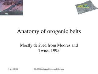 Anatomy of orogenic belts