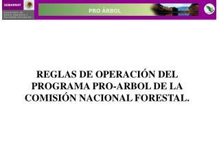 REGLAS DE OPERACIÓN DEL PROGRAMA PRO-ARBOL DE LA COMISIÓN NACIONAL FORESTAL.