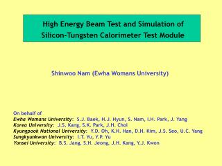 High Energy Beam Test and Simulation of  Silicon-Tungsten Calorimeter Test Module