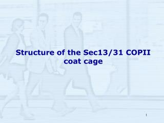 Structure of the Sec13/31 COPII coat cage