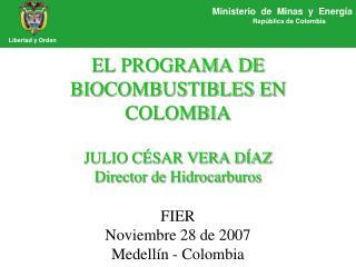 EL PROGRAMA DE BIOCOMBUSTIBLES EN COLOMBIA JULIO CÉSAR VERA DÍAZ Director de Hidrocarburos