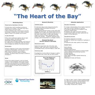 """"""" The Heart of the Bay """""""