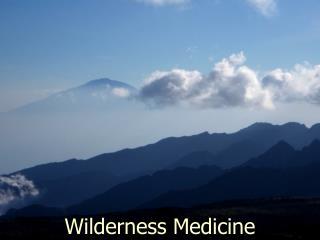 Wilderness Medicine