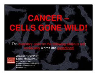 CANCER –  CELLS GONE WILD!