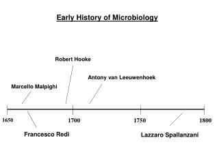 Early History of Microbiology