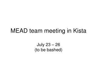 MEAD team meeting in Kista