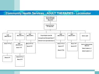 Community Health Services - ADULT THERAPIES -  Locomotor