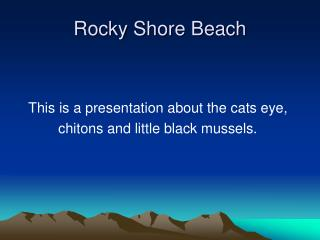 Rocky Shore Beach