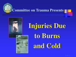 Injuries Due  to Burns  and Cold