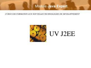 Module  Java Expert