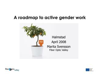 A roadmap to active gender work