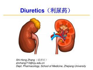 Diuretics (利尿药)