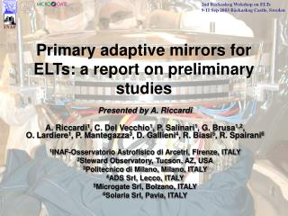 Primary adaptive mirrors for ELTs: a report on preliminary studies