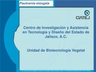 Centro de Investigaci n y Asistencia en Tecnolog a y Dise o del Estado de Jalisco, A.C.  Unidad de Biotecnolog a Vegetal