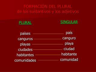 FORMACIÓN DEL PLURAL de los sustantivos y los adjetivos