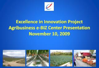 Excellence in  I nnovation  Project Agribusiness e-BIZ Center Presentation November 10, 2009
