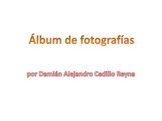 por Damián Alejandro Cedillo Reyna
