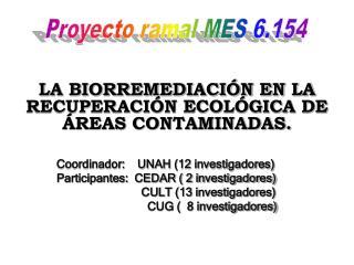 Coordinador:    UNAH (12 investigadores) Participantes:  CEDAR ( 2 investigadores)