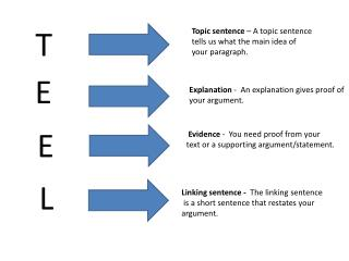 Topic sentence  – A topic sentence tells us what the main idea of your paragraph.