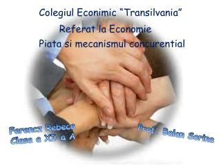 """Colegiul Econimic """"Transilvania"""""""