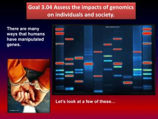 Goal  3.04 Assess the impacts of genomics on individuals and society.