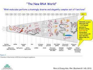 Rinn & Chang  Ann. Rev. Biochem  81:145, 2012
