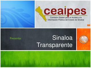Sinaloa  Transparente