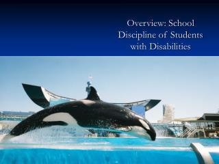 Overview: School Discipline of Students with Disabilities