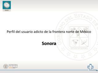 Perfil del usuario adicto de la frontera norte de México Sonora