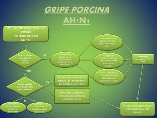 GRIPE PORCINA AH1N1
