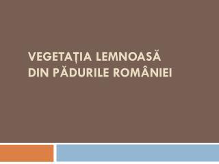 VEGETA ŢIA LEMNOASĂ DIN PĂDURILE ROMÂNIEI