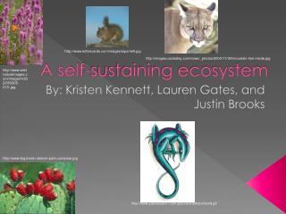 A self-sustaining ecosystem