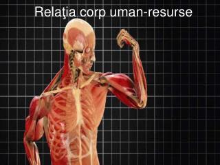 Rela ţ ia corp uman-resurse