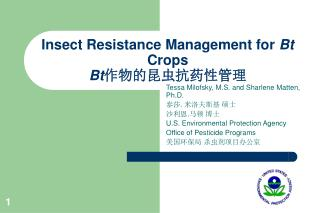 Insect Resistance Management for  Bt  Crops Bt 作物的昆虫抗药性管理