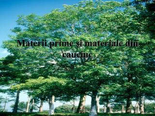 Materii prime şi materiale din cauciuc