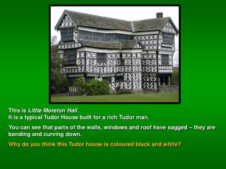 All these Tudor houses have used  wattle and daub  and a  timber frame .