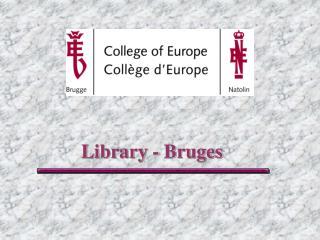 Library - Bruges