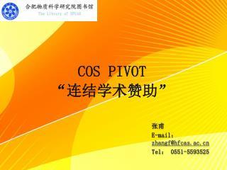 "COS PIVOT  ""连结学术赞助"""