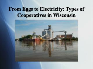 From Eggs to Electricity: Types of Cooperatives in Wisconsin