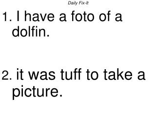 Daily Fix-It 1. I have a foto of a dolfin.   2. it was tuff to take a picture.