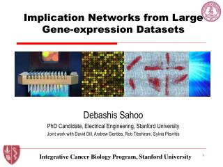 Implication Networks from Large Gene-expression Datasets